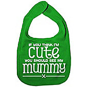 Dirty Fingers If you think I'm Cute you should see my Mummy Bib Green