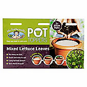 Mr Fothergill's Mixed Lettuce Salad Leaves Garden Plant Pot Topper