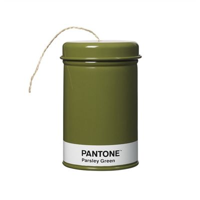 Pantone String Storage Tin | Parsley Green (String Included)