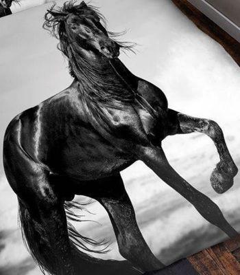 3D Horse Throw - 150 x 200 cm