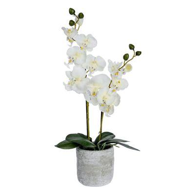 Homescapes Cream Artificial Orchid in Concrete Grey Stone Pot