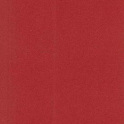 Canford Paper A4 Guardsman Red