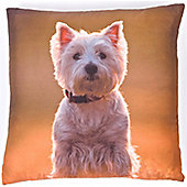 Photographic Westie, Dog Square Cushion