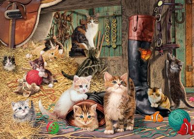 Discoveries - Kitten capers Puzzle