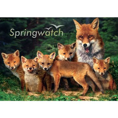 Spring Watch - 1000pc Puzzle