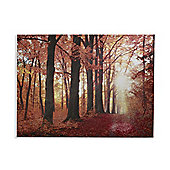 Glitter Canvas New Forest Printed Canvas 60cm x 80cm