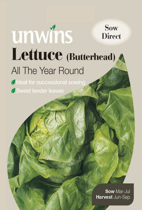 Lettuce All The Year Round