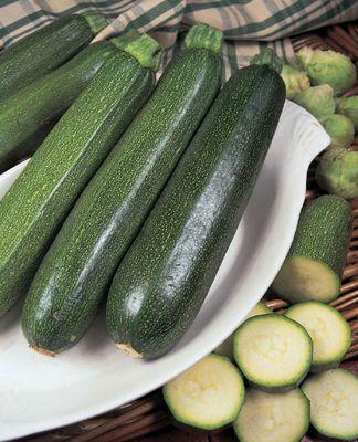 courgette (courgette 'All Green Bush')