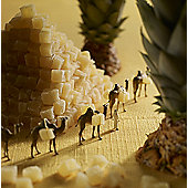 Holy Mackerel Pineapple pyramid Greetings Card