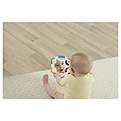 Fisher-Price Shake-n-Beats Tambourine