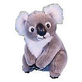 Dowman 20cm Koala Plush Soft Toy