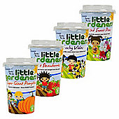 Little Gardeners Set of 4 Grow-your-Own Vegetables & Flowers Starter Pots