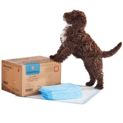Milo & Misty Dog Training Pads. Super-Absorbent Pack of 100 with 5 Layer Protection