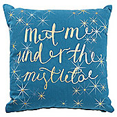 Tesco Christmas Mistletoe Cushion