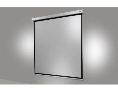 Celexon Electric Professional Plus Screen 240 X 180 Cm