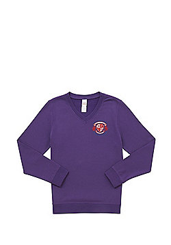 Unisex Embroidered Cotton Blend School V-Neck Sweatshirt with As New Technology - Purple
