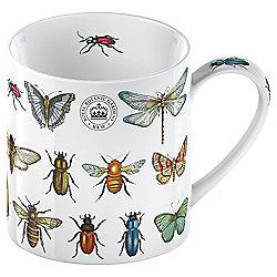 Kew Bug Study Mug