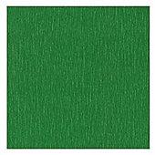Canson Superior Crepe Paper 50cm x 250cm Fern Green
