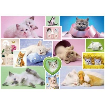Cuddly Cats - 1000pc Puzzle