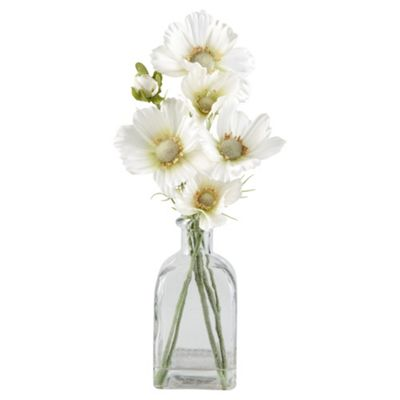 Tesco Cosmo In Bottle Vase, Clear