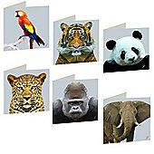 Birthday, Anniversary Greetings Card - Jungle Animal Design - Blank - Set of 6