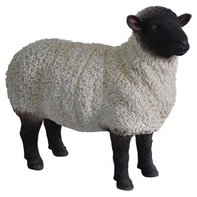 Real Life Black/White Sheep Ornament