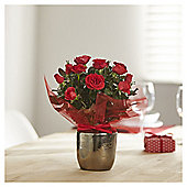 Red Rose in Ceramic Pot
