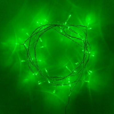 40 Green LED Indoor Fairy Lights