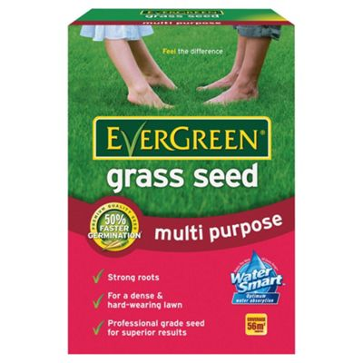 Evergreen Grass seed 1.68kg