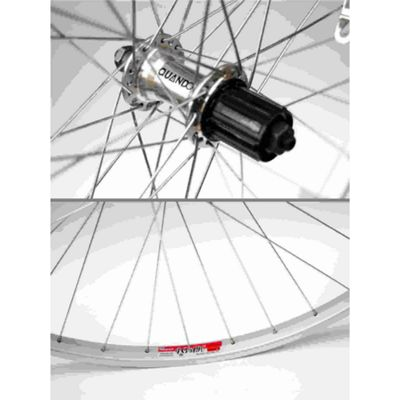 Momentum City Life 700c Wheel, Rear