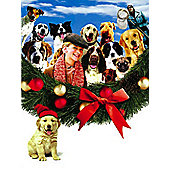 2 Christmas Film Collection (12 Dogs 1 & 12 Dogs 2) 2 disc DVD