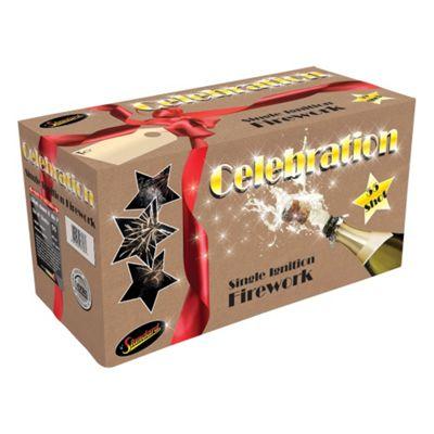 Celebration 55 Shot Fireworks