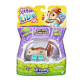 Little Live Pets Fluffy Friends Series 1 - Donutty