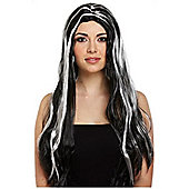 Adult Halloween Black & White Long Straight Witch Wig Fancy Dress Accessory 65cm