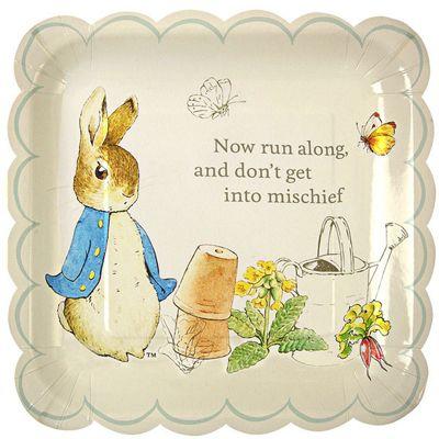 Peter Rabbit Plates - 23cm Paper Party Plates