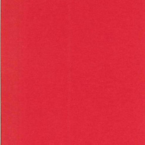 Canford Paper A4 Bright Red
