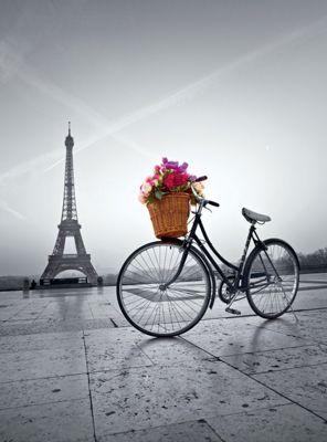 Romantic Promenade - 500pc Puzzle