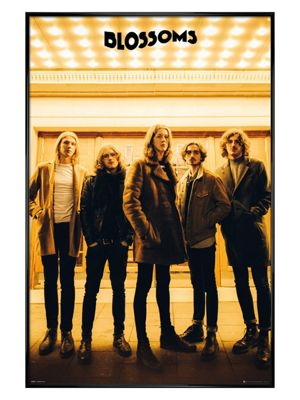 Gloss Black Framed Blossoms Band Picture Poster 61x91.5cm