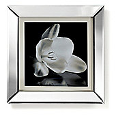 Showstopper Floral Mirrored Frame Print 60cm x 60cm