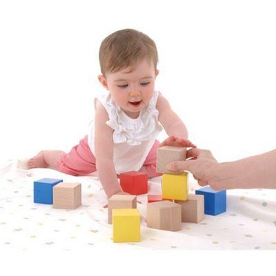 Galt Toys First Bricks