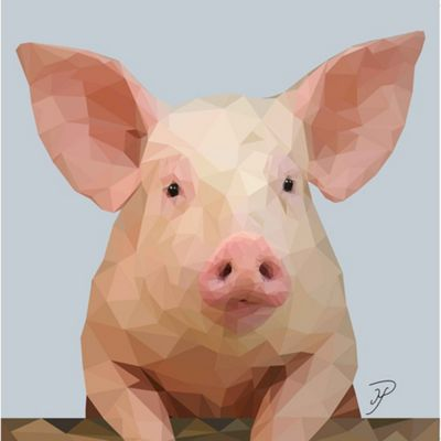 Birthday, Anniversary Greetings Card - Pig Animal Design - Blank