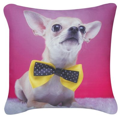 Pink Chihuahua Yellow Bow Cushion Photographic Style