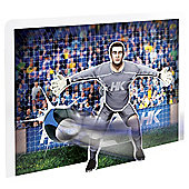 Harry Kane Goal Blaster Game
