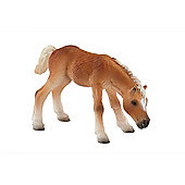 Haflinger Foal - Action Figures