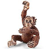 Schleich Orangutan Young