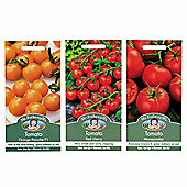 Mr Fothergill's Seeds - Grow Your Own Tomato Collection - 3pc Multipack