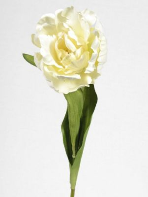 Artificial - Tulip Frilly - Cream