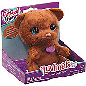 FurReal Friends The Luvimals Sweet Singin' Luv Cub (B2768)