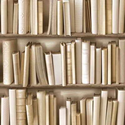 Bookcase Wallpaper - Natural - J43027