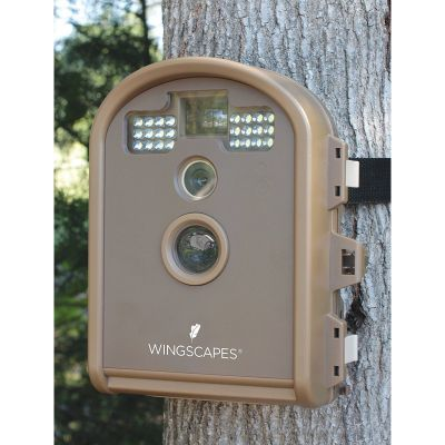 Wingscapes Outdoor Wildlife Camera with Infra red and Motion Detection, Waterproof and Battery operated